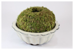 MULTISAVE, Moss Ball and Bonsai Pot combo No. 2